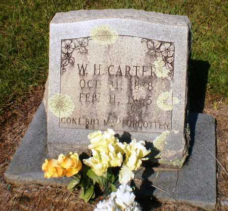 CARTER, W H - Ashley County, Arkansas | W H CARTER - Arkansas Gravestone Photos