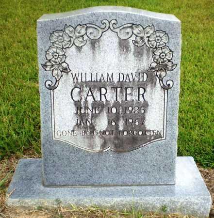 CARTER, WILLIAM DAVID - Ashley County, Arkansas   WILLIAM DAVID CARTER - Arkansas Gravestone Photos