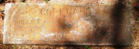 COPELAND, MARY - Ashley County, Arkansas | MARY COPELAND - Arkansas Gravestone Photos