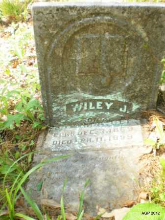 GEE, WILEY J - Ashley County, Arkansas | WILEY J GEE - Arkansas Gravestone Photos