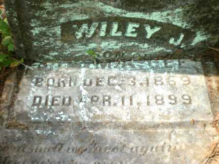 GEE, WILEY J (CLOSE UP) - Ashley County, Arkansas | WILEY J (CLOSE UP) GEE - Arkansas Gravestone Photos