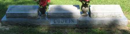 GODWIN (2), LEONE - Ashley County, Arkansas | LEONE GODWIN (2) - Arkansas Gravestone Photos