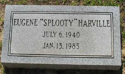 HARVILLE, EUGENE - Ashley County, Arkansas   EUGENE HARVILLE - Arkansas Gravestone Photos