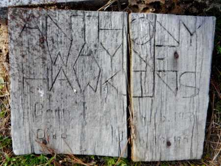 HAWKINS, ANTHONY WAYNE - Ashley County, Arkansas | ANTHONY WAYNE HAWKINS - Arkansas Gravestone Photos