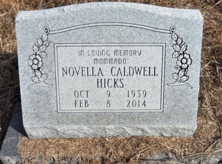 HICKS, NOVELLA - Ashley County, Arkansas | NOVELLA HICKS - Arkansas Gravestone Photos