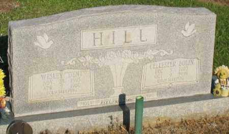 HILL, WESLEY DENTON - Ashley County, Arkansas | WESLEY DENTON HILL - Arkansas Gravestone Photos
