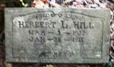 HILL, HERBERT L - Ashley County, Arkansas | HERBERT L HILL - Arkansas Gravestone Photos