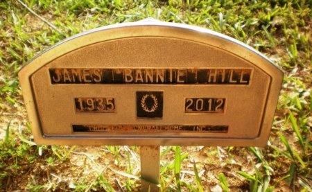"HILL, JAMES ""BANNIE"" - Ashley County, Arkansas   JAMES ""BANNIE"" HILL - Arkansas Gravestone Photos"