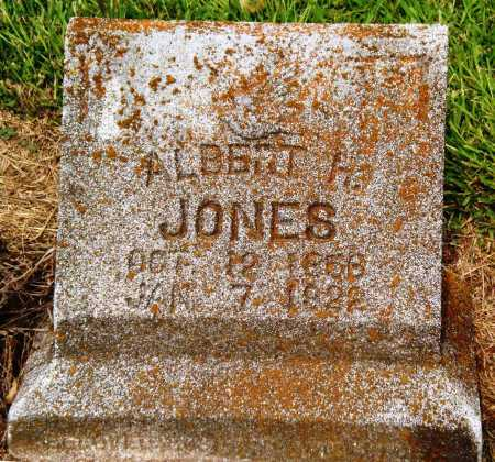 JONES, ALBERT H - Ashley County, Arkansas | ALBERT H JONES - Arkansas Gravestone Photos