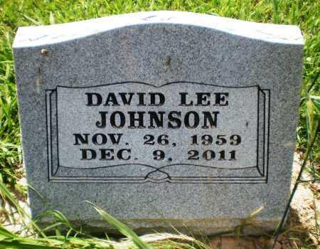 JOHNSON, DAVID LEE - Ashley County, Arkansas | DAVID LEE JOHNSON - Arkansas Gravestone Photos
