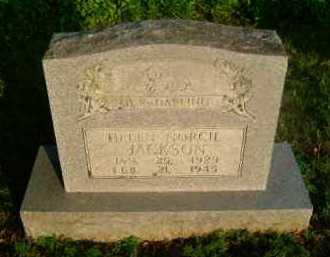 JACKSON, HELEN NORCIL - Ashley County, Arkansas | HELEN NORCIL JACKSON - Arkansas Gravestone Photos
