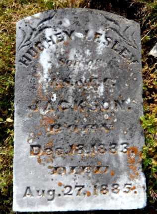 JACKSON, HUGHEY LESLEY - Ashley County, Arkansas | HUGHEY LESLEY JACKSON - Arkansas Gravestone Photos