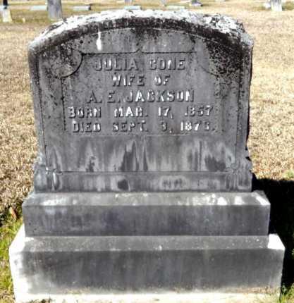 JACKSON, JULIA - Ashley County, Arkansas   JULIA JACKSON - Arkansas Gravestone Photos