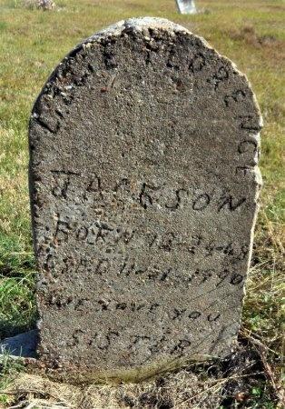 JACKSON, LIZZIE FLORENCE - Ashley County, Arkansas   LIZZIE FLORENCE JACKSON - Arkansas Gravestone Photos