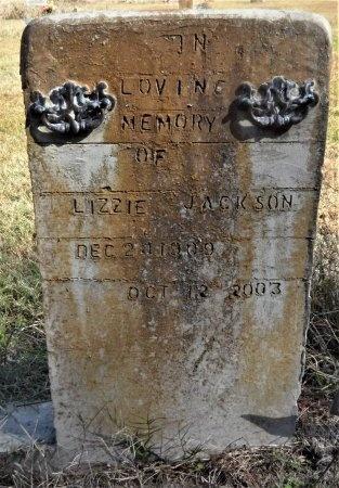 JACKSON, LIZZIE - Ashley County, Arkansas | LIZZIE JACKSON - Arkansas Gravestone Photos