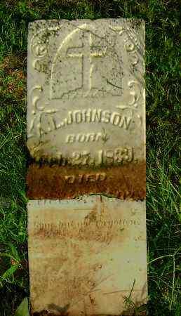 JOHNSON, ALONZA L - Ashley County, Arkansas   ALONZA L JOHNSON - Arkansas Gravestone Photos