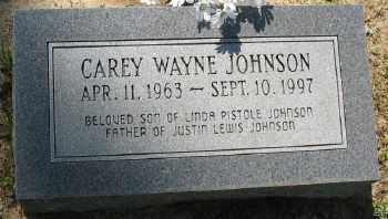 JOHNSON, CAREY WAYNE - Ashley County, Arkansas | CAREY WAYNE JOHNSON - Arkansas Gravestone Photos