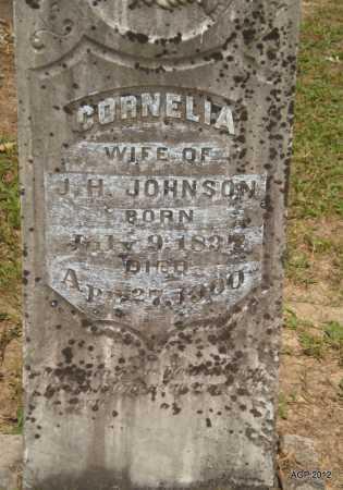 JOHNSON, CORNELIA - Ashley County, Arkansas | CORNELIA JOHNSON - Arkansas Gravestone Photos