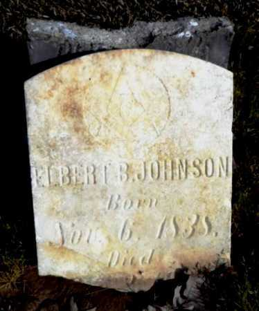 JOHNSON, ELBERT B - Ashley County, Arkansas   ELBERT B JOHNSON - Arkansas Gravestone Photos