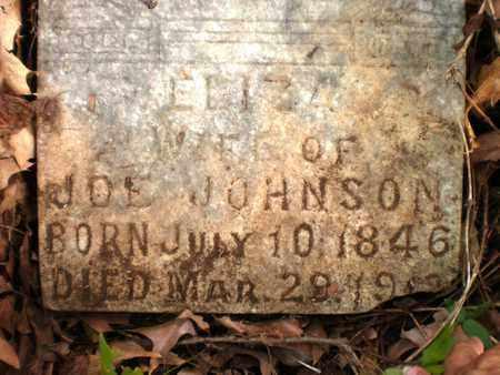 JOHNSON, ELIZA - Ashley County, Arkansas | ELIZA JOHNSON - Arkansas Gravestone Photos
