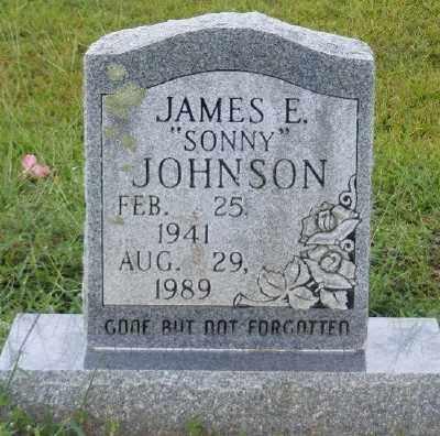 JOHNSON, JAMES E - Ashley County, Arkansas | JAMES E JOHNSON - Arkansas Gravestone Photos