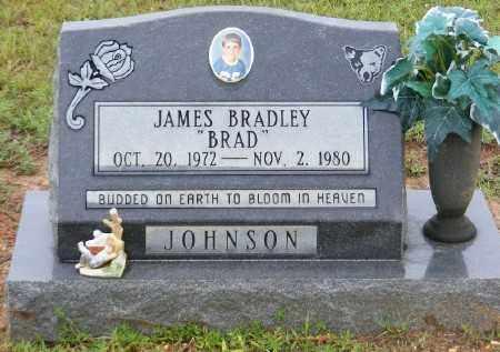JOHNSON, JAMES BRADLEY - Ashley County, Arkansas | JAMES BRADLEY JOHNSON - Arkansas Gravestone Photos