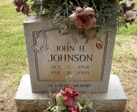 JOHNSON, JOHN H - Ashley County, Arkansas | JOHN H JOHNSON - Arkansas Gravestone Photos