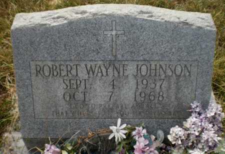 JOHNSON, ROBERT WAYNE - Ashley County, Arkansas | ROBERT WAYNE JOHNSON - Arkansas Gravestone Photos