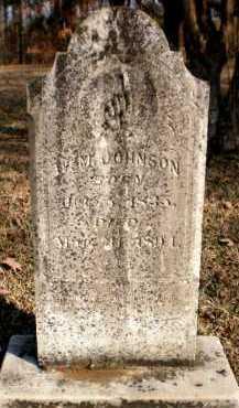 JOHNSON, W M - Ashley County, Arkansas | W M JOHNSON - Arkansas Gravestone Photos