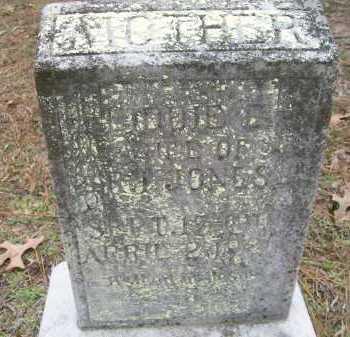 JONES, LIDDIE E - Ashley County, Arkansas   LIDDIE E JONES - Arkansas Gravestone Photos