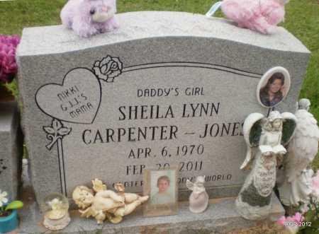 JONES, SHIELA LYNN - Ashley County, Arkansas | SHIELA LYNN JONES - Arkansas Gravestone Photos