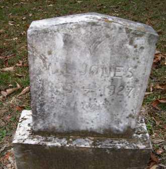 JONES, W L - Ashley County, Arkansas | W L JONES - Arkansas Gravestone Photos