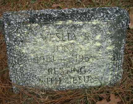 JONES, WESLEY R - Ashley County, Arkansas | WESLEY R JONES - Arkansas Gravestone Photos