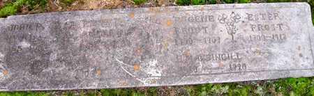 FROST, ESTER - Ashley County, Arkansas | ESTER FROST - Arkansas Gravestone Photos