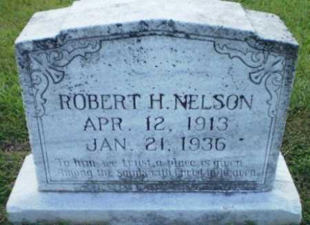 NELSON, ROBERT H - Ashley County, Arkansas | ROBERT H NELSON - Arkansas Gravestone Photos
