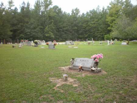 *OVERVIEW,  - Ashley County, Arkansas |  *OVERVIEW - Arkansas Gravestone Photos