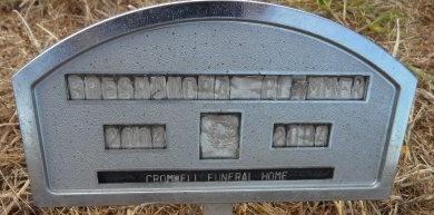 PLUMMER, BRESHUNDRA - Ashley County, Arkansas | BRESHUNDRA PLUMMER - Arkansas Gravestone Photos