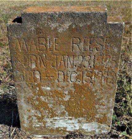 REESE, MABLE - Ashley County, Arkansas | MABLE REESE - Arkansas Gravestone Photos