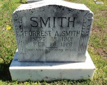 SMITH, FORREST AUBREY - Ashley County, Arkansas | FORREST AUBREY SMITH - Arkansas Gravestone Photos