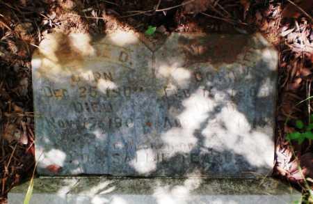 TEAGUE, EVIE D - Ashley County, Arkansas   EVIE D TEAGUE - Arkansas Gravestone Photos