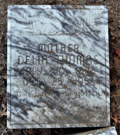 THOMAS, DELIA - Ashley County, Arkansas | DELIA THOMAS - Arkansas Gravestone Photos