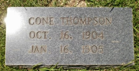 THOMPSON, CONE - Ashley County, Arkansas | CONE THOMPSON - Arkansas Gravestone Photos