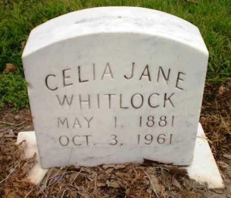 WHITLOCK, CELIA JANE - Ashley County, Arkansas | CELIA JANE WHITLOCK - Arkansas Gravestone Photos