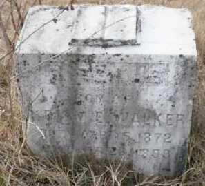 WALKER, R BENNIE - Ashley County, Arkansas   R BENNIE WALKER - Arkansas Gravestone Photos