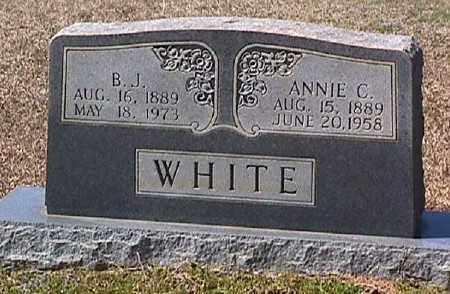 WHITE, ANNIE C. - Ashley County, Arkansas   ANNIE C. WHITE - Arkansas Gravestone Photos