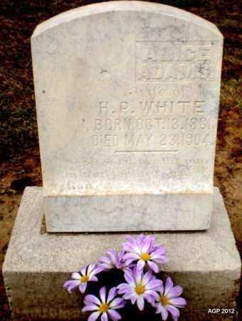 WHITE, ALICE - Ashley County, Arkansas | ALICE WHITE - Arkansas Gravestone Photos