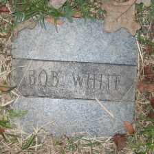 WHITE, BOB - Ashley County, Arkansas   BOB WHITE - Arkansas Gravestone Photos
