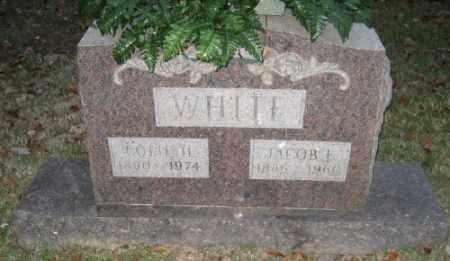 WHITE, JACOB F. - Ashley County, Arkansas | JACOB F. WHITE - Arkansas Gravestone Photos
