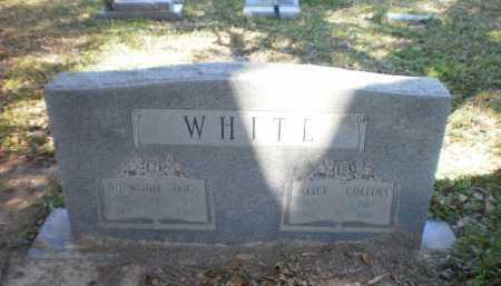 WHITE, ALICE - Ashley County, Arkansas   ALICE WHITE - Arkansas Gravestone Photos