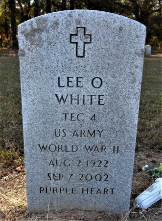 WHITE (VETERAN WWII), LEE O. - Ashley County, Arkansas | LEE O. WHITE (VETERAN WWII) - Arkansas Gravestone Photos